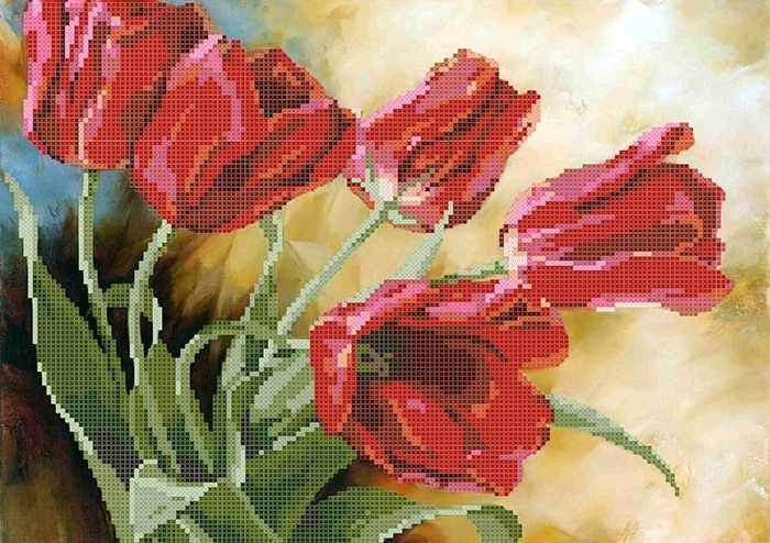 ММЦ-009 Красные тюльпаны