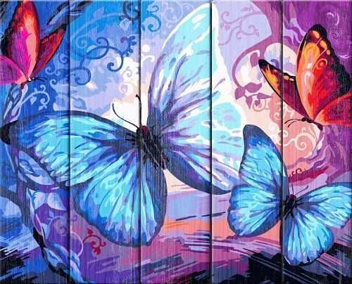 WN009 Бабочки