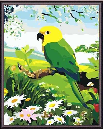 "MG203 ""Попугай"" - раскраска (Menglei)"