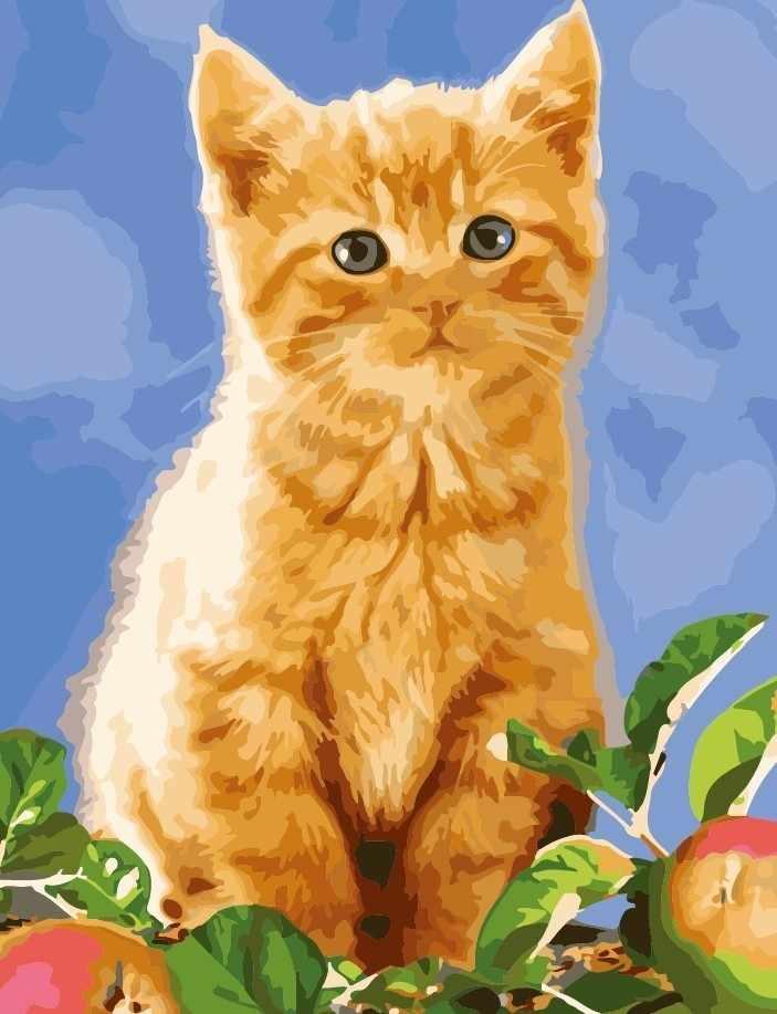 """MMC074 """"Рыжий котенок"""" - раскраска (Menglei)"""