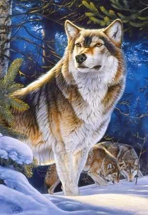 C-104062 Страж. Волк, 1000 деталей