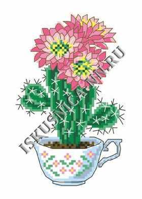 м8152 Цветущей кактус