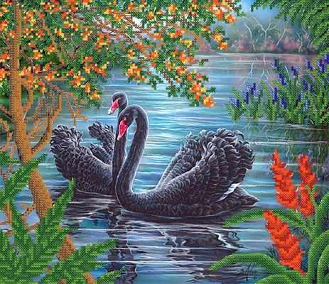 РКП-684 Пара черных лебедей  - схема для вышивания (Марiчка)