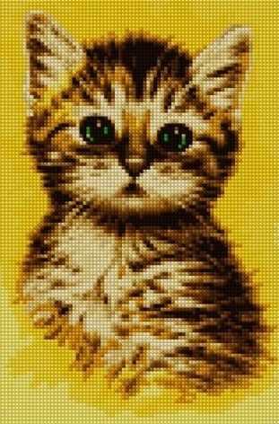 30261-Х Портрет котенка