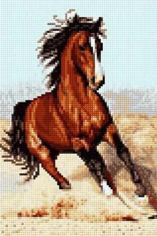 30254-Х Дикий конь