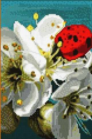 30353-Х Яблоневый цвет
