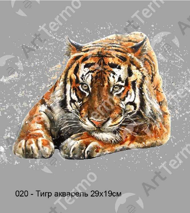 020 - Тигр акварель 29х19см