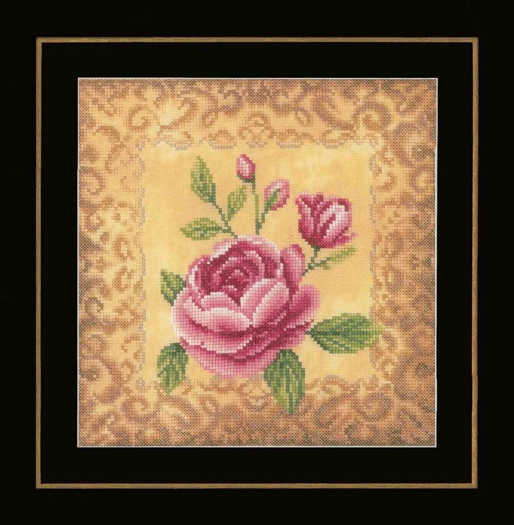 PN-0169679 Roses