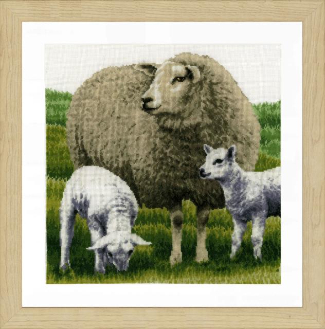 PN-0170416 Sheep (Lanarte)