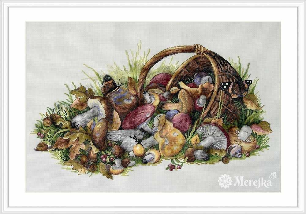 К-127 Mushrooms