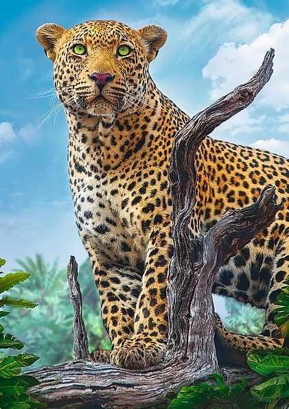 37332 Дикий леопард, 500 деталей