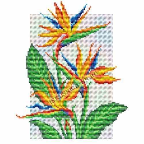 599 Цветок райской птицы