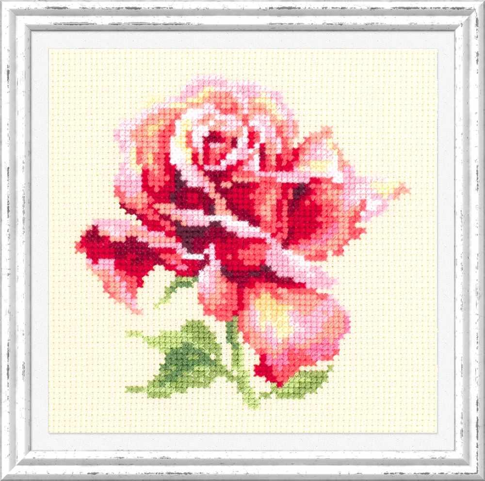 150-001 Прекрасная роза