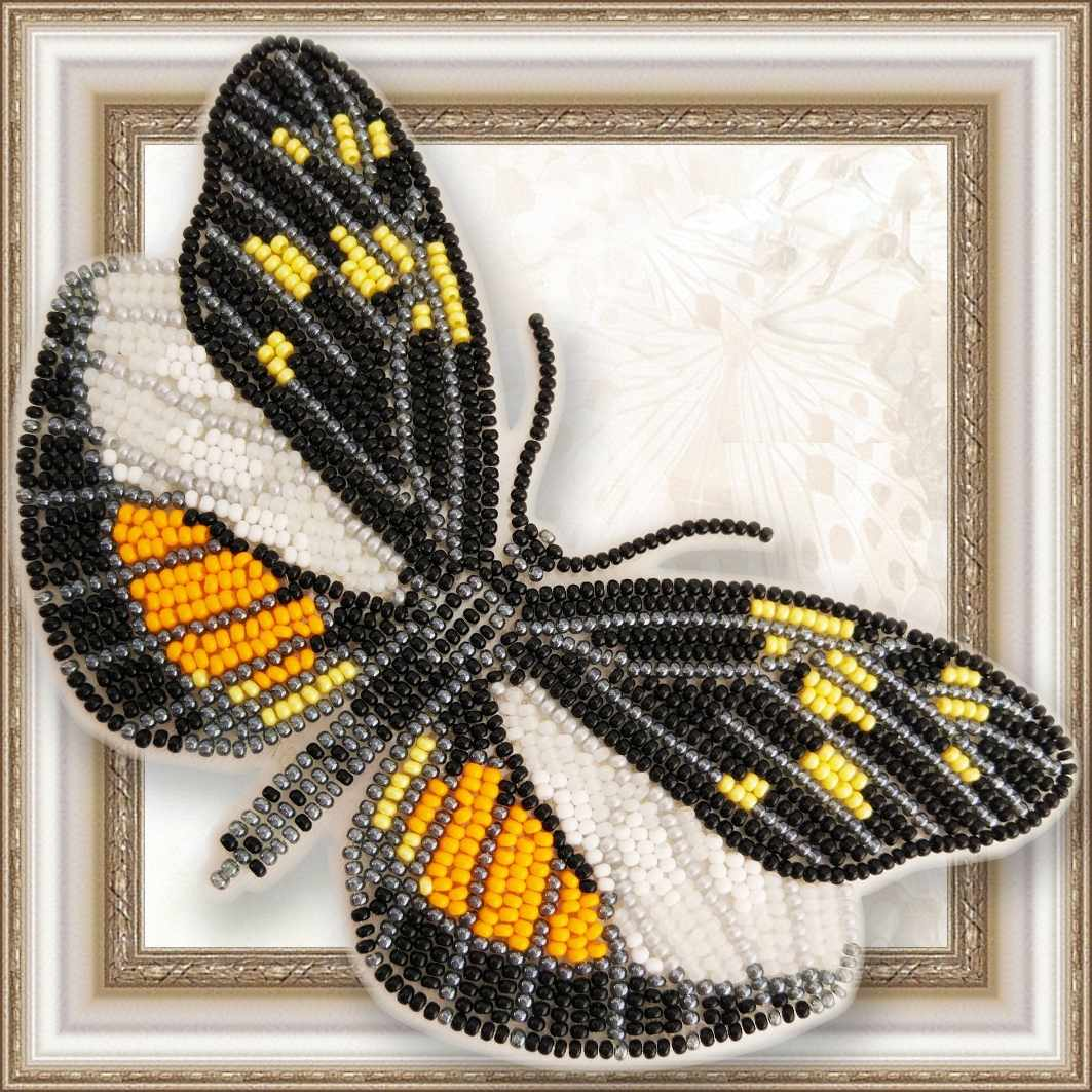 BGP-061 Dismorphia eunoe desine