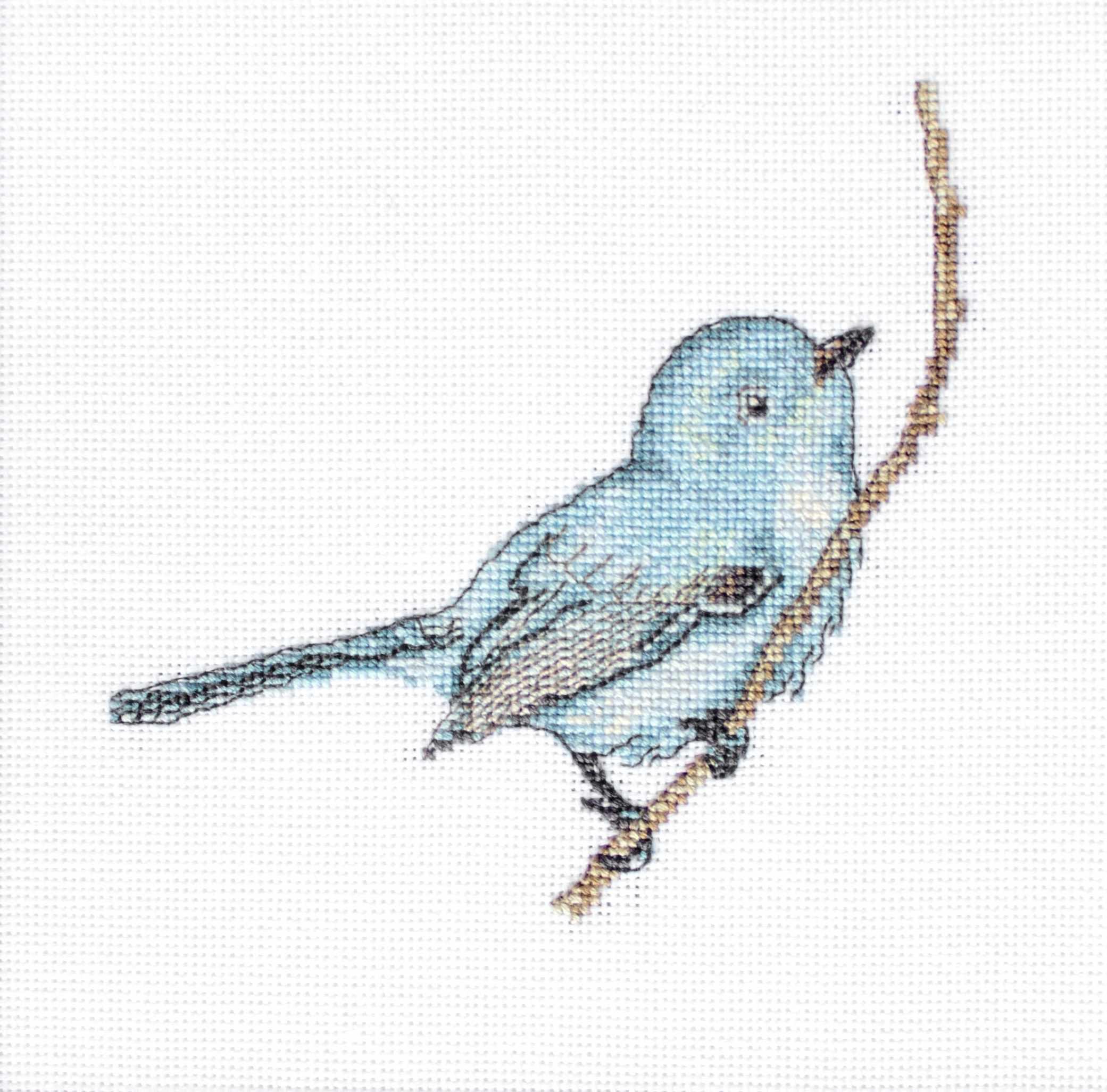 B11588 Певчая птица (Luca-S)