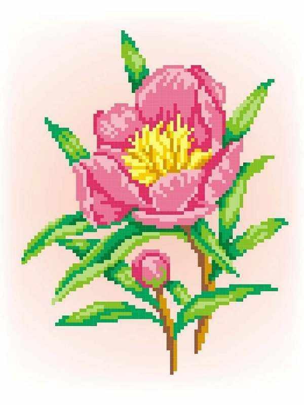 СК-032 Радость - схема для вышивания (М.П. Студия)