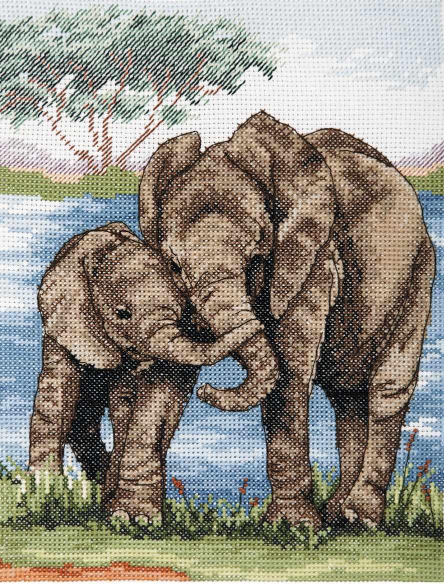 PCE963 Слоны