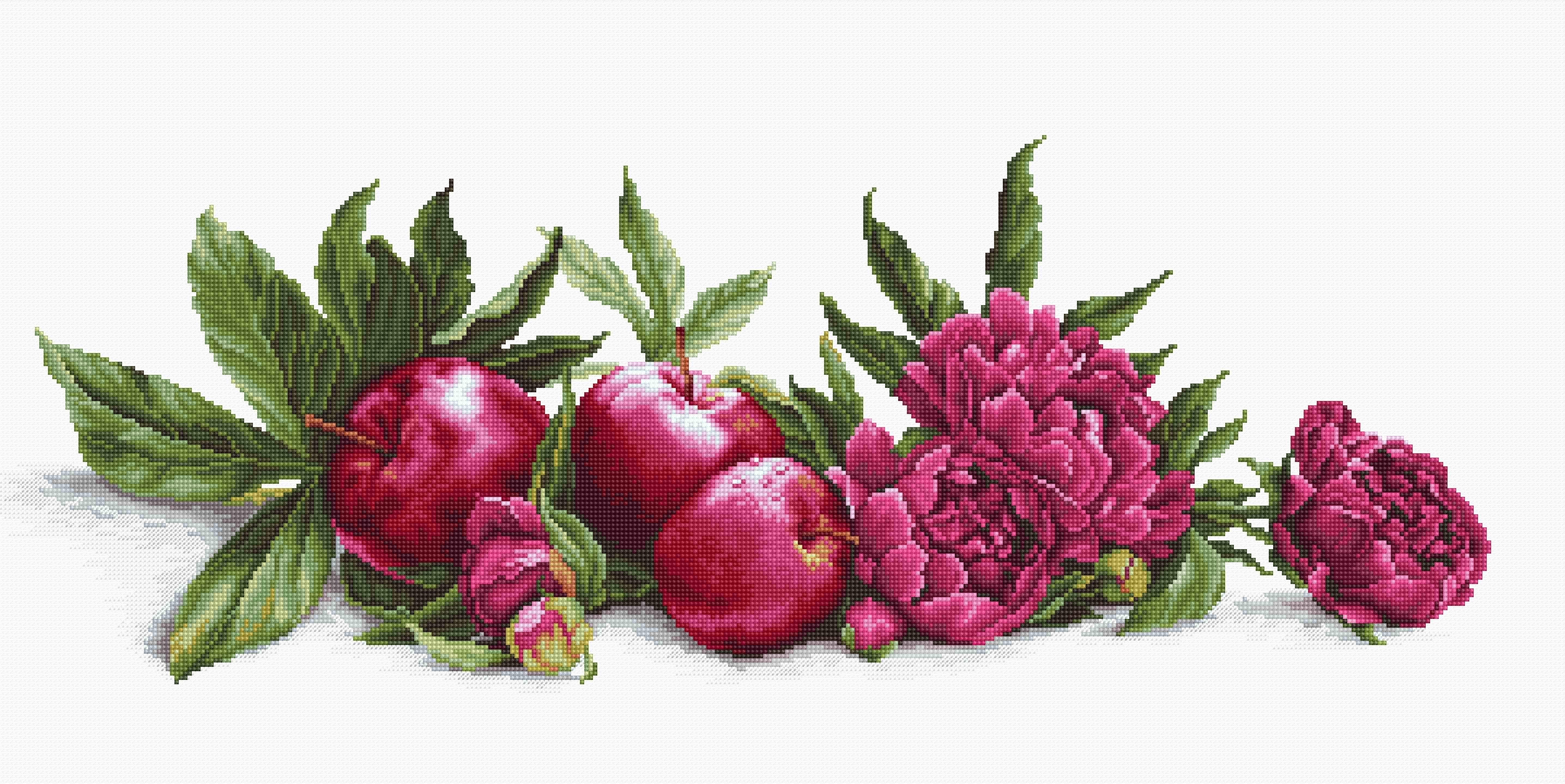 BA2357 Пионы и красные яблоки