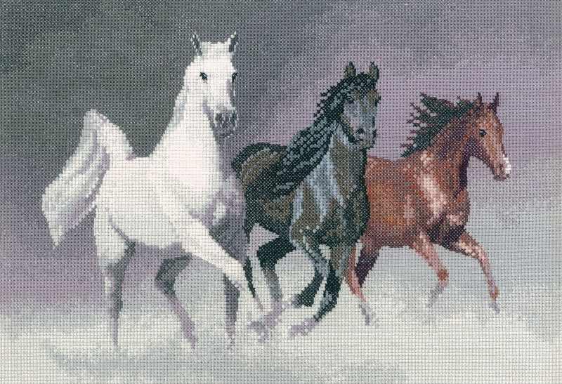 PGWH1022 Дикие кони