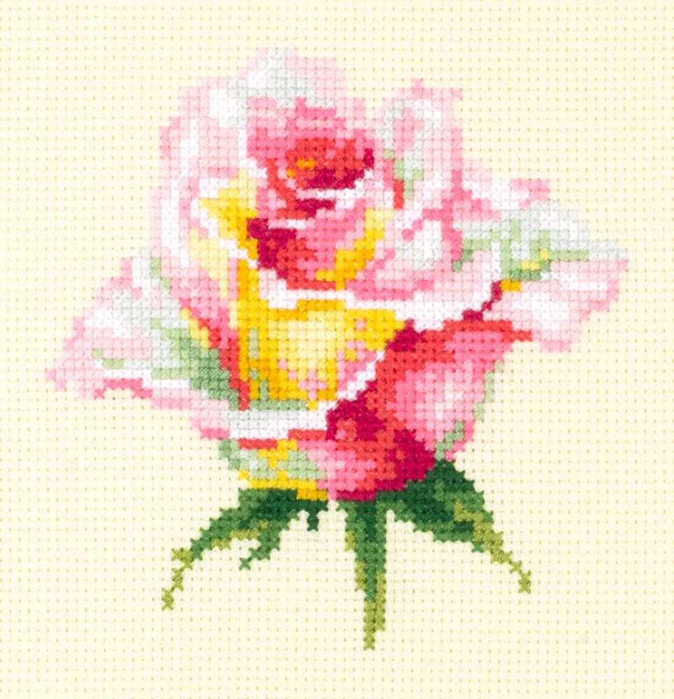 150-004 Нежная роза
