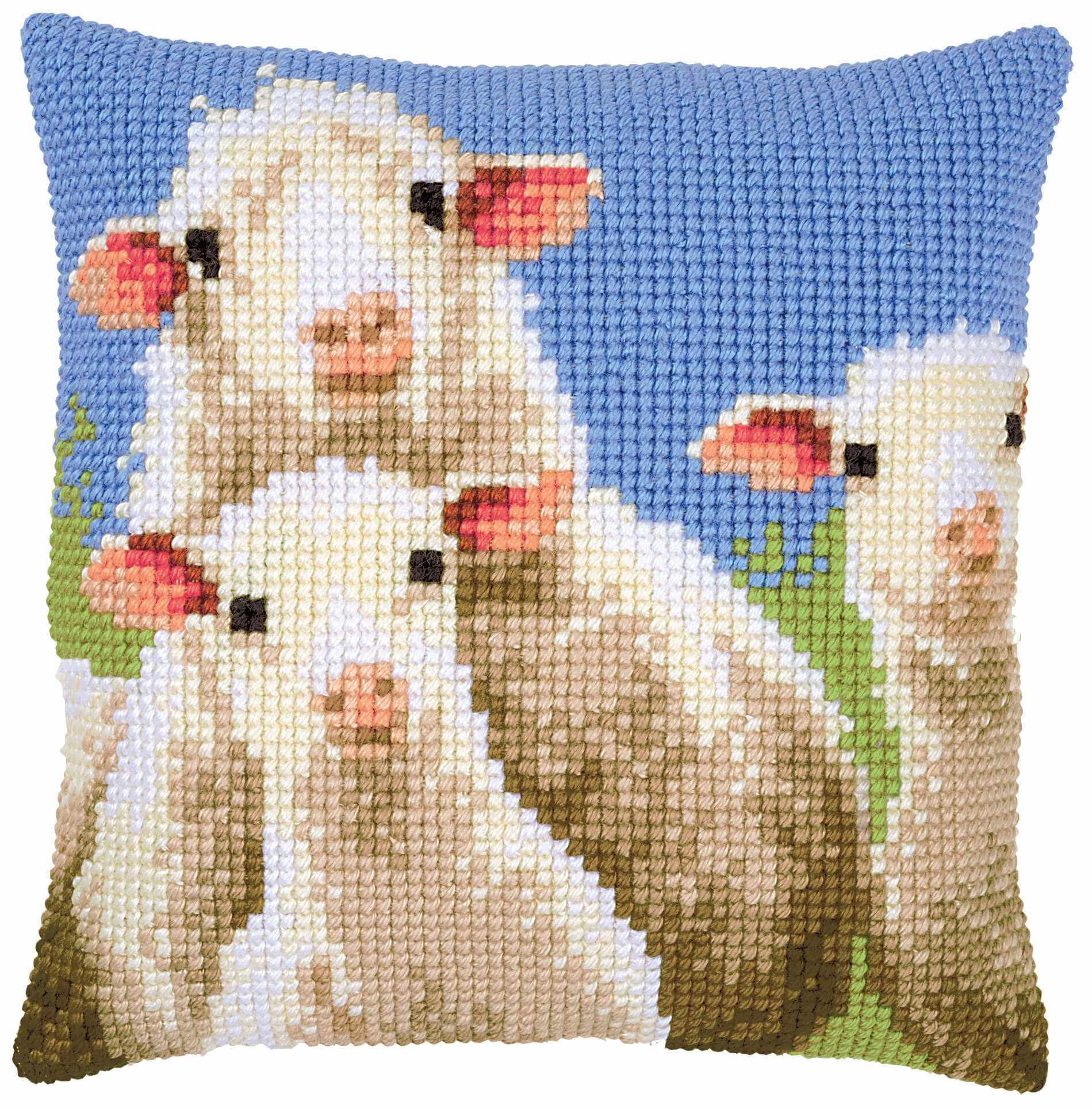 PN-0157426 Curious sheep (Vervaco)