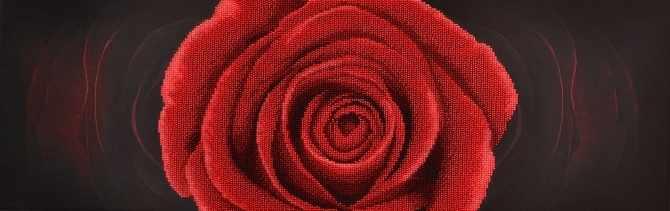 11004 Красная Роза