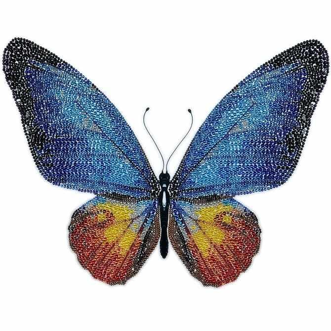 11017 Голубая Бабочка