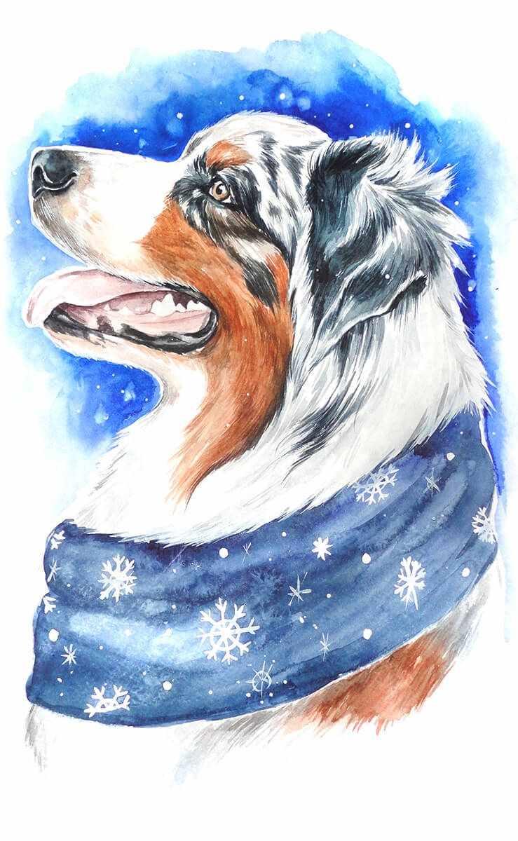 Алмазная вышивка lc014 «Зимний пёс»