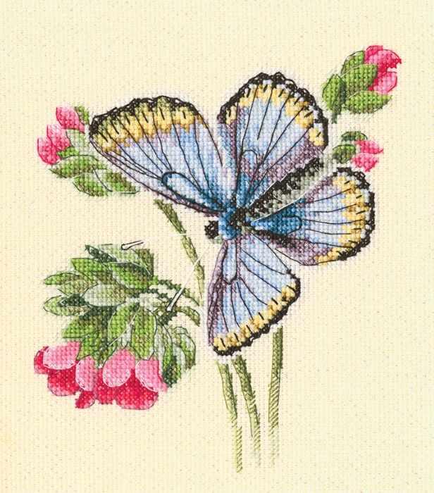 M749 Бабочка села на нежный цветок