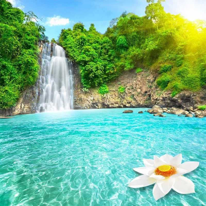 KH0368 Райский уголок