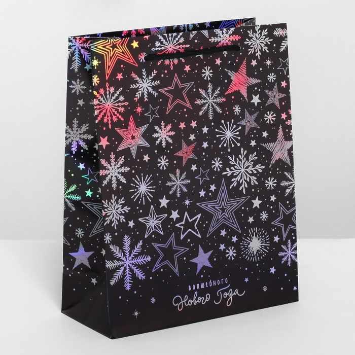 4205730 Пакет подарочный голография вертикальный «Волшебного Нового года»