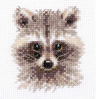 0-208 Животные в портретах. Енотик