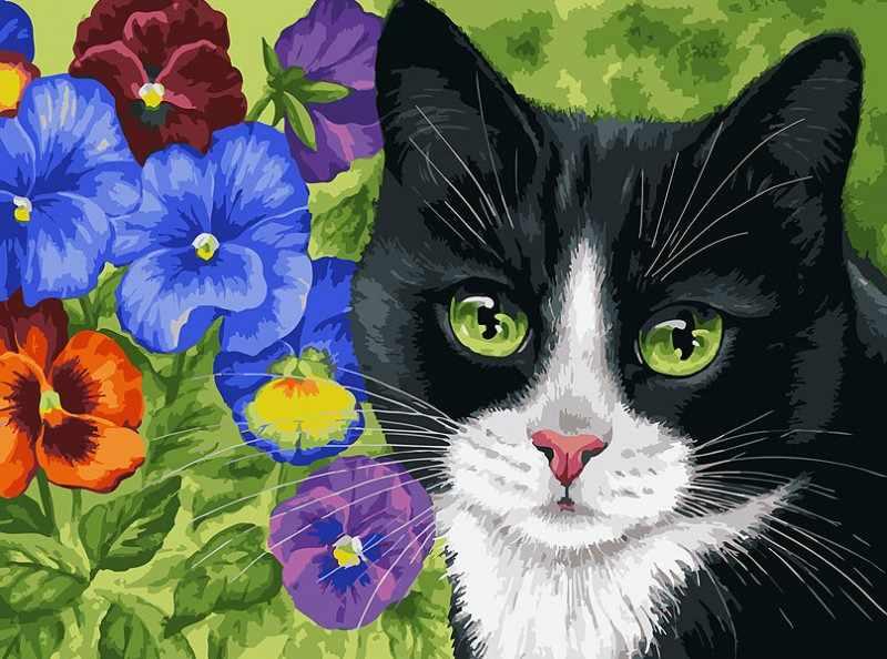294-AS Кот в анютиных глазках (Белоснежка)