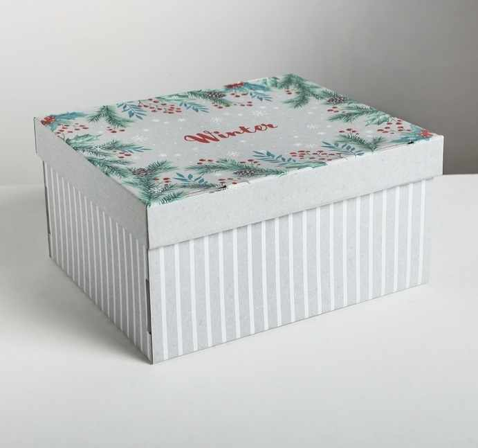 4410569 Складная коробка Winter