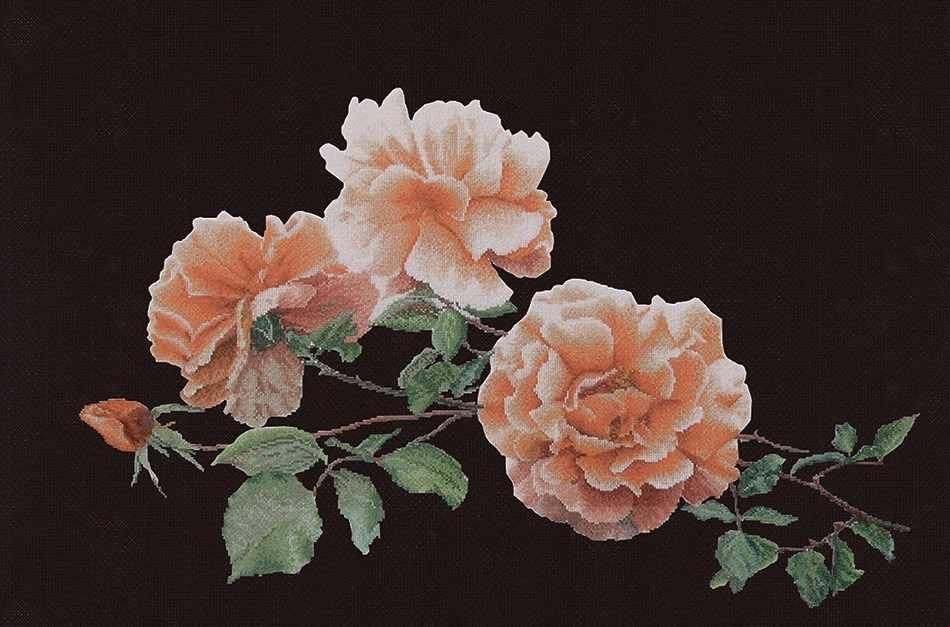 414.05 Розы
