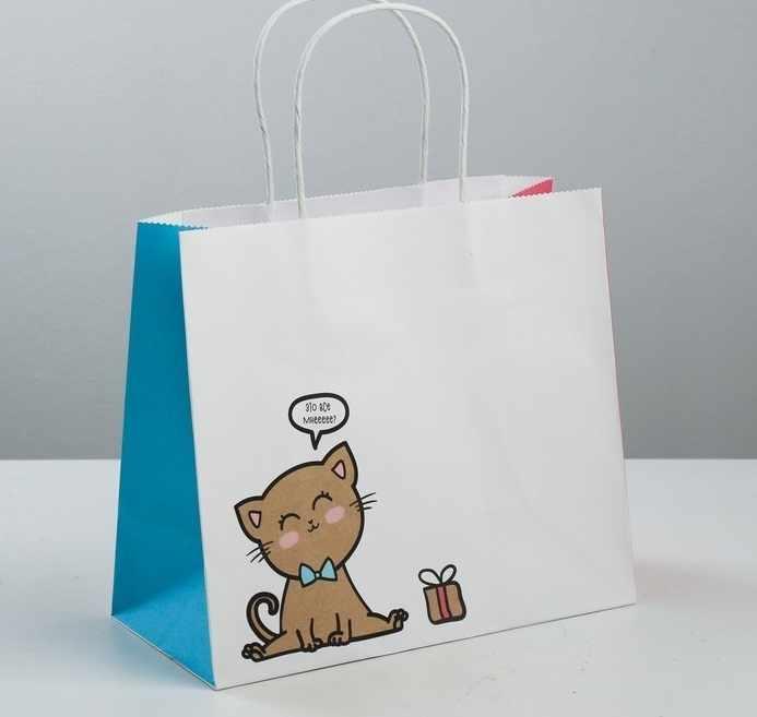 3823497 Пакет подарочный крафтовый «Котик»