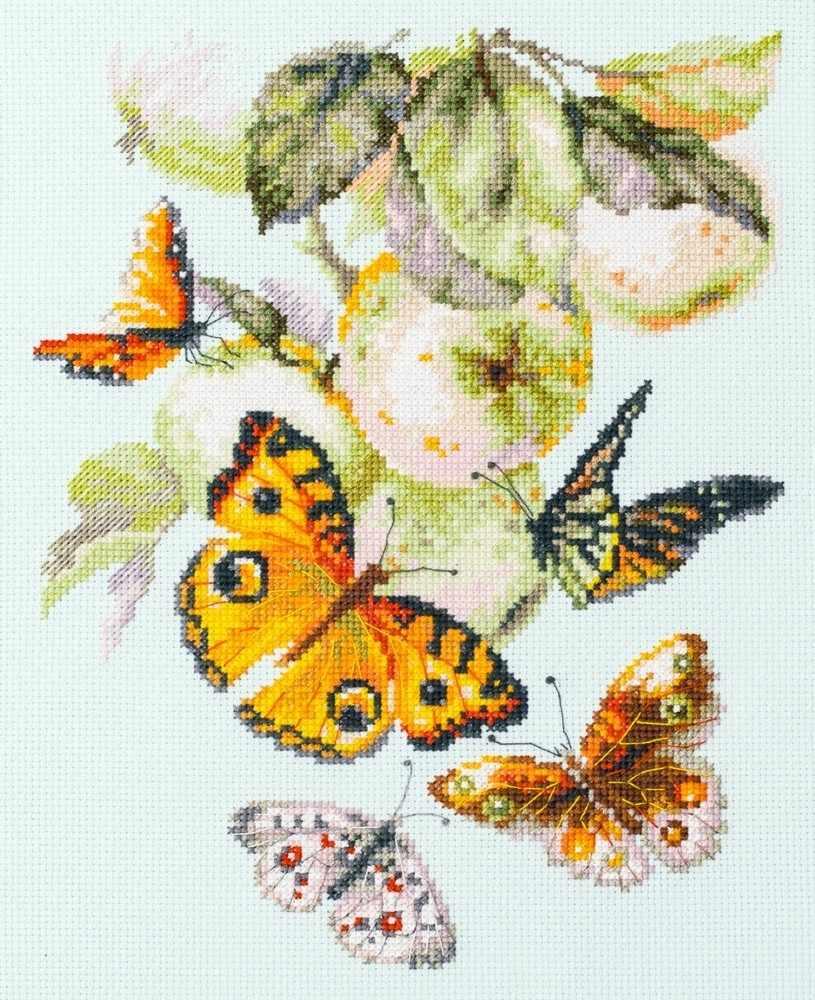 130-052 Бабочки на яблоке