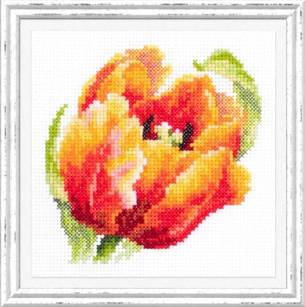 150-010 Красный тюльпан