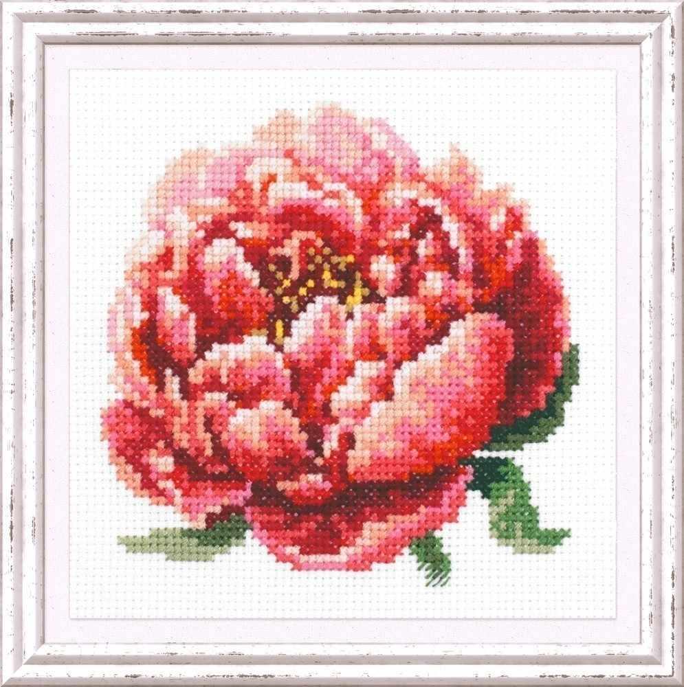 150-009 Красный пион