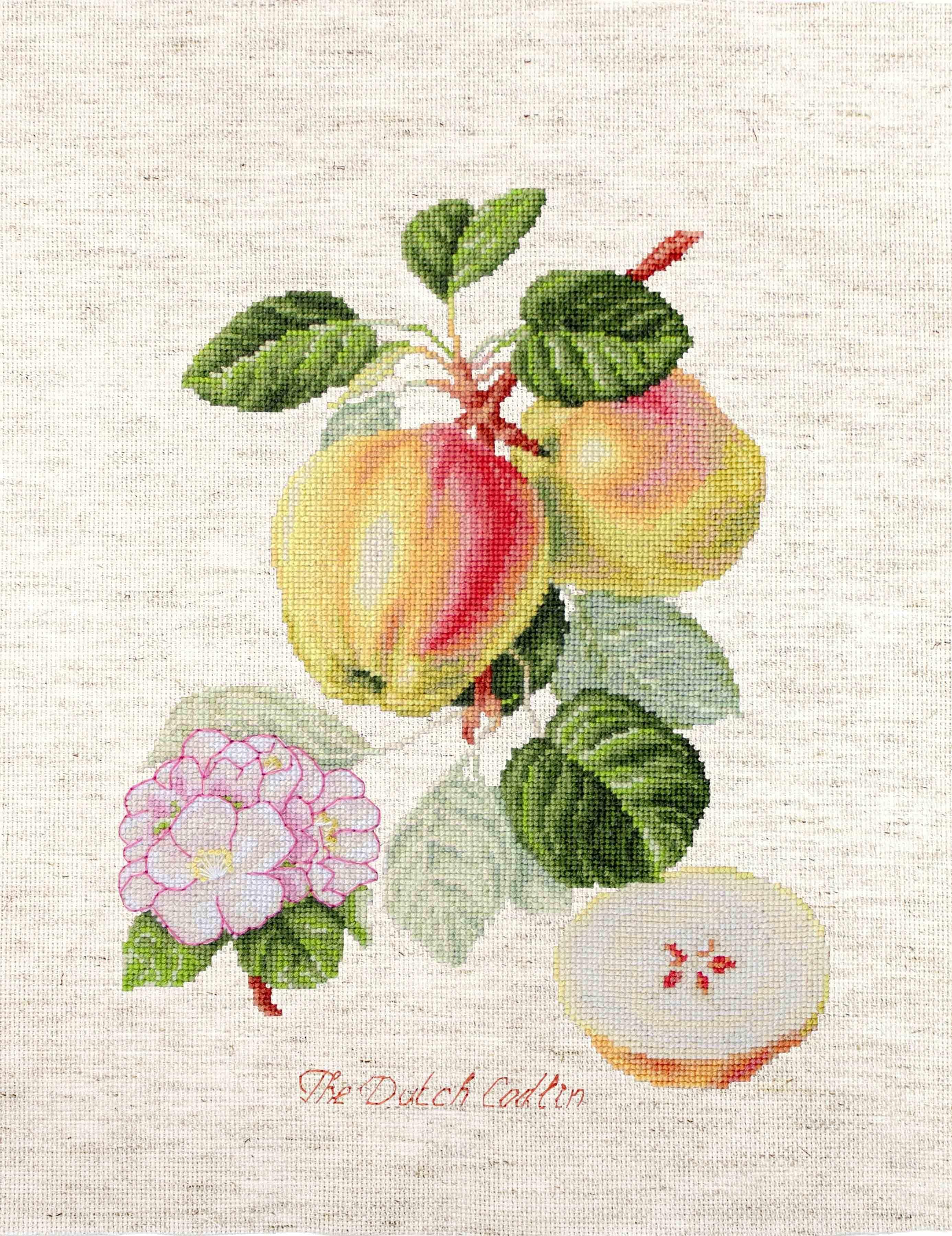 BA22440 Яблоки