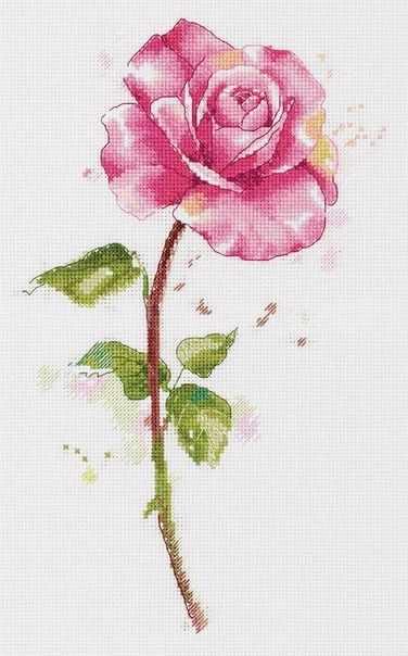 """C-7190 """"Акварельная роза"""""""