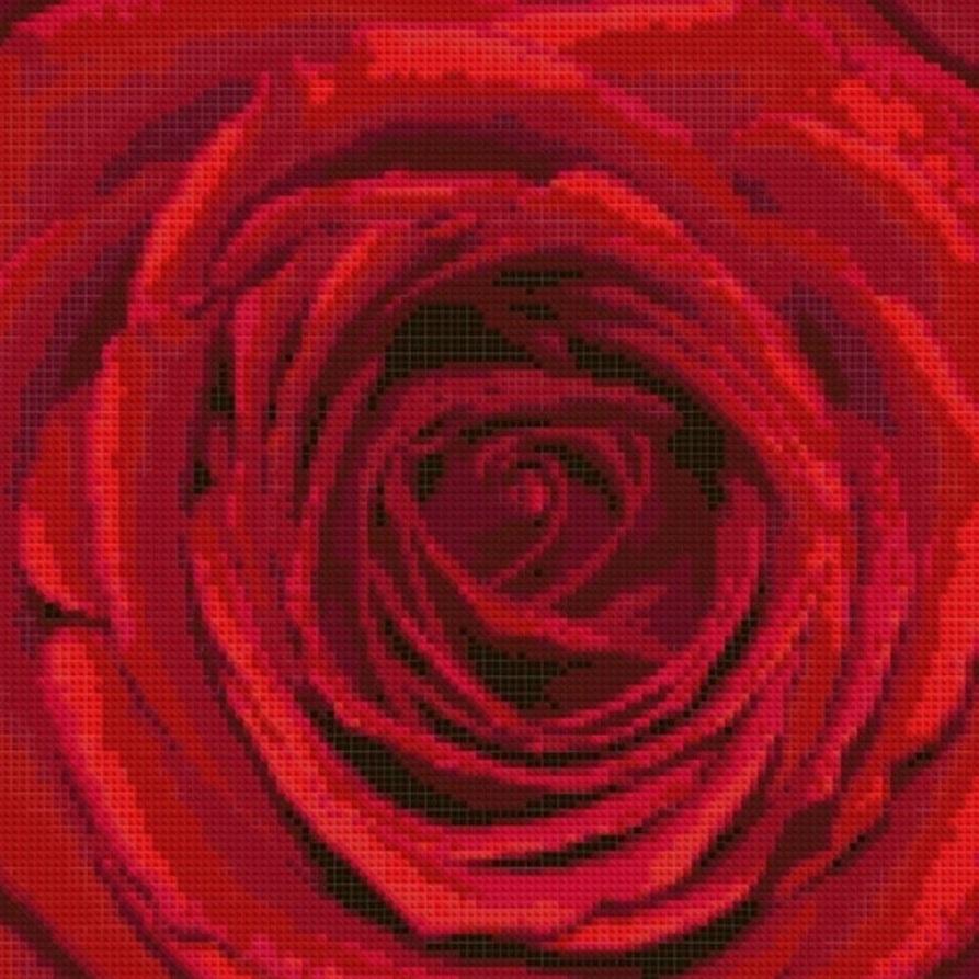 AM056 Красная роза