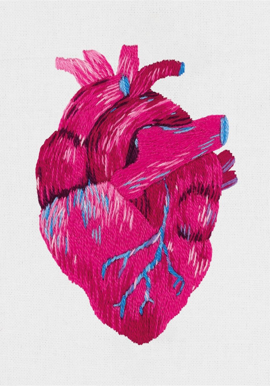 JK-2195 Анатомическое сердце