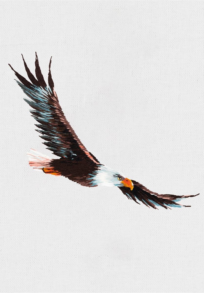 JK-2200 Орел