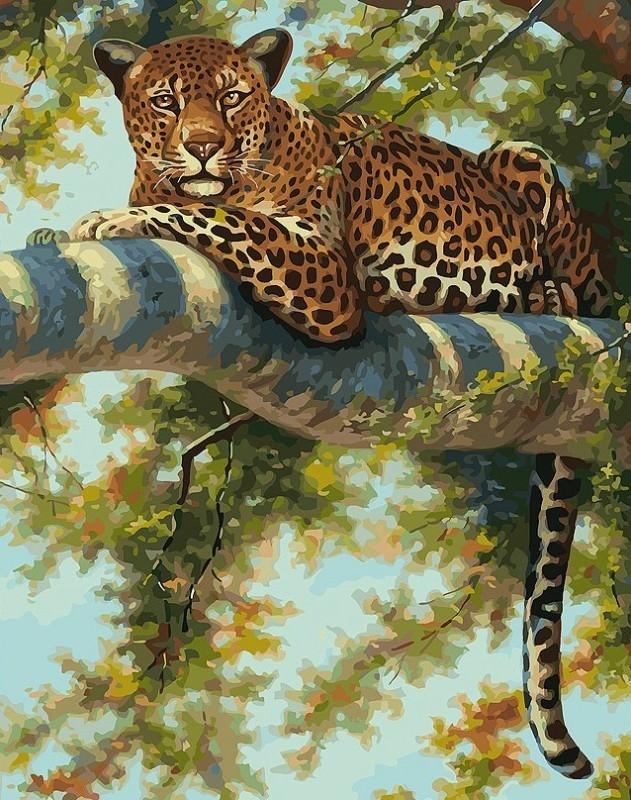 276-AB Леопард в тени ветвей (Белоснежка)