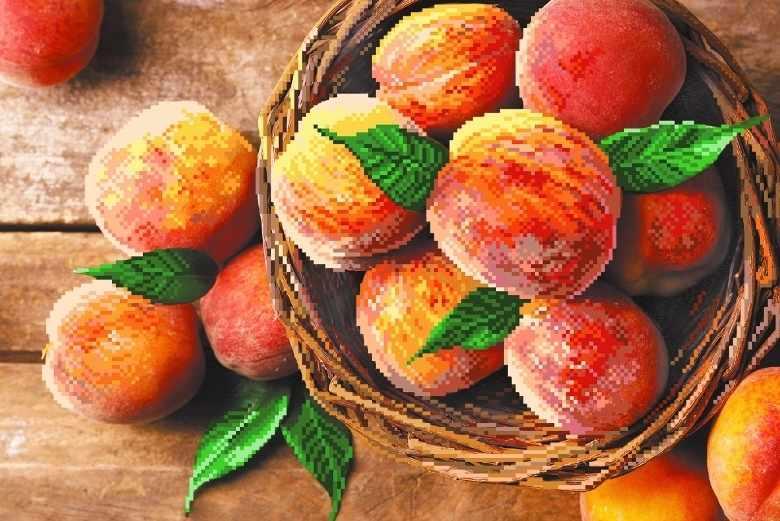 4187 Райские персики - рисунок на шёлке (МП)