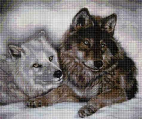 50143 Волки - мозаика Anya