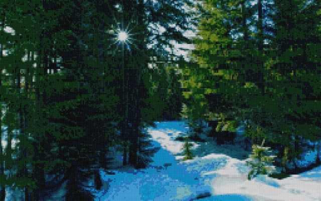 50157 Зимний лес - мозаика Anya