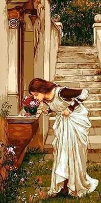 0631 Аромат роз