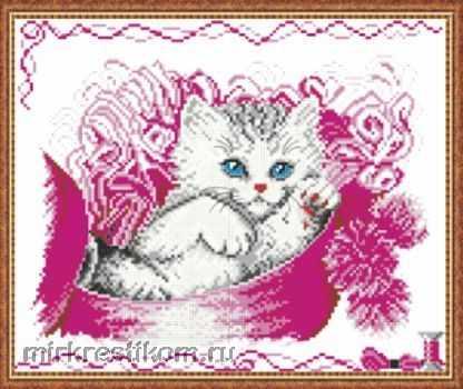 639 Котёнок в шкатулке
